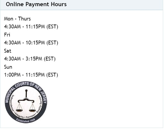 njmcdirect online payment timings